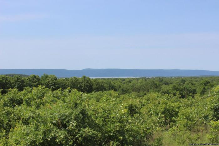 30 Acres with Lakeview