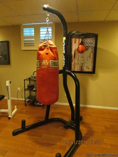 Everlast Punching Bag, Speed Bag and Stand