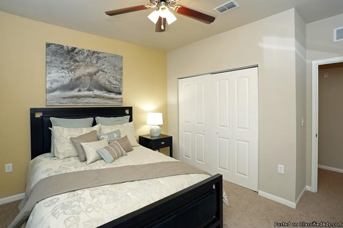 Live in your dream home at Avalon Apartments